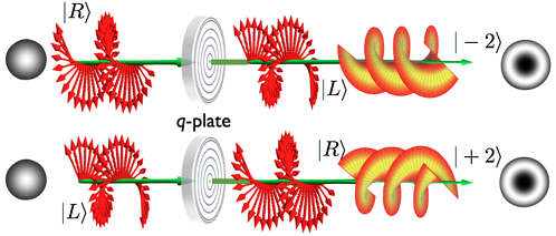 Q-plate