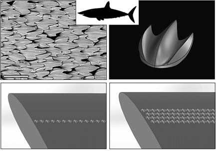 fabrication additive de motifs « peau de requin »